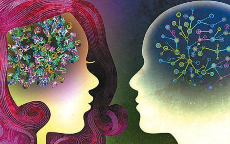 Cover cerebros masculino y femenino